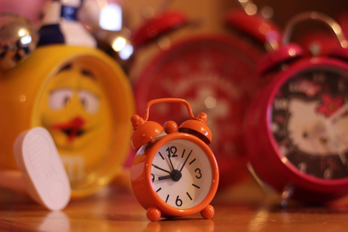 Free stock photo of alarm, childhood, cute