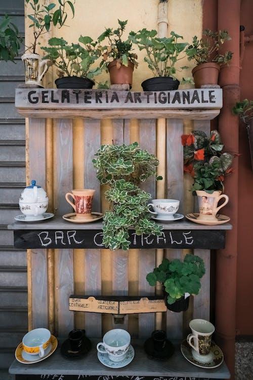 Ảnh lưu trữ miễn phí về kem, người Ý, quán cà phê, quán cà phê waterstreet