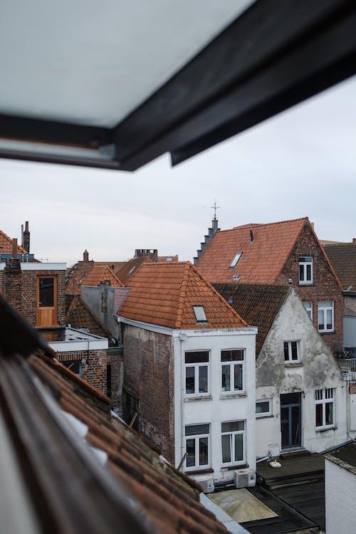Ingyenes stockfotó ablakok, design, elülső, építészet témában