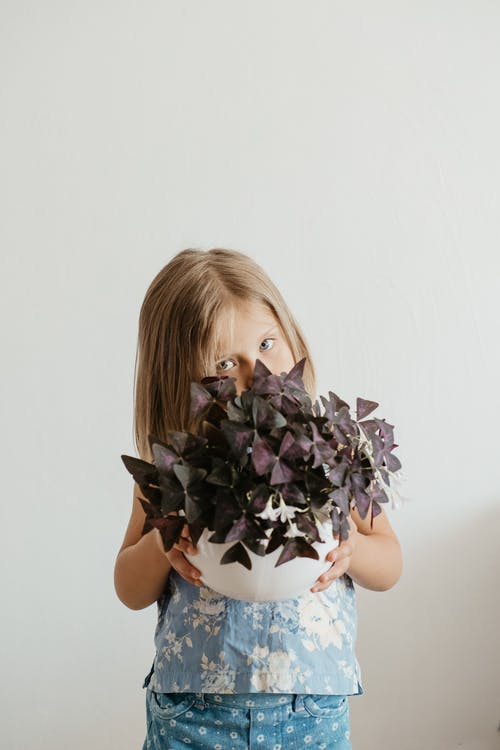 Shallow Focus Photo of Girl Holding Purple Plants