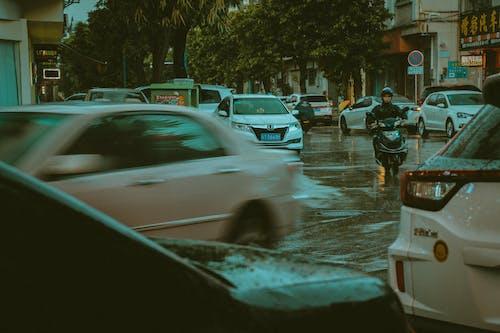 Бесплатное стоковое фото с автомобили, буря, вода, вождение