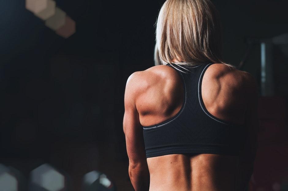 back, bodybuilding, exercise