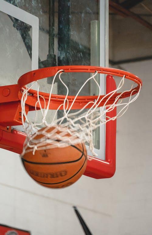 Foto profissional grátis de basquete, Cesta de basquete, foto, fotografia