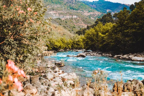 Free stock photo of blue, brook, mountain, river