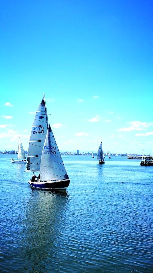 Безкоштовне стокове фото на тему «#australia, #melbourne victoria, #sailing, #williamstown beach»