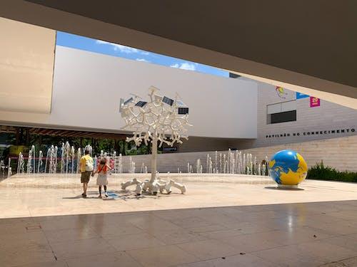 博物館, 建築, 知識の無料の写真素材