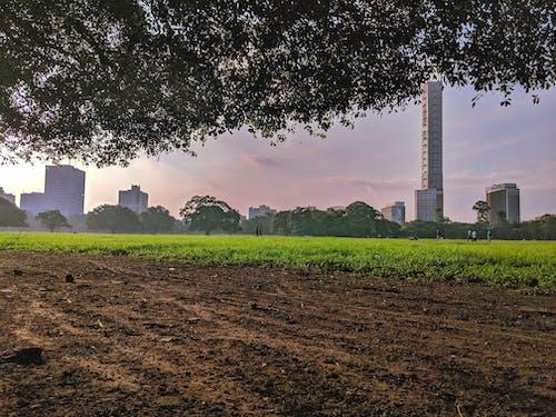 Бесплатное стоковое фото с детская площадка, красивый пейзаж, небоскребы