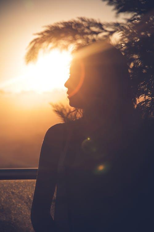 Free stock photo of beautiful sunset, sunset