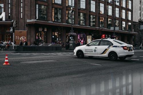 Základová fotografie zdarma na téma akce, asfalt, auto, automobil