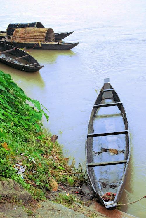 Безкоштовне стокове фото на тему «assam, брахмапутри, краса в природі, річка»