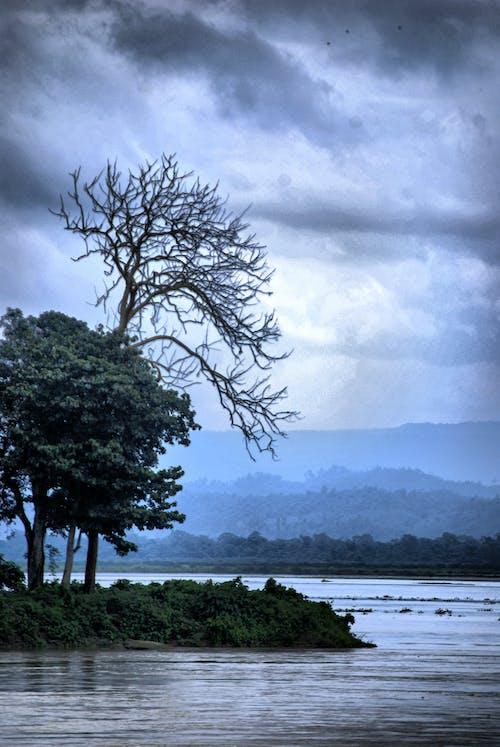Безкоштовне стокове фото на тему «assam, краєвид, краса в природі, річка»