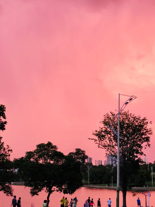 Immagine gratuita di corsa, gente comune, ora d'oro, tramonto bellissimo