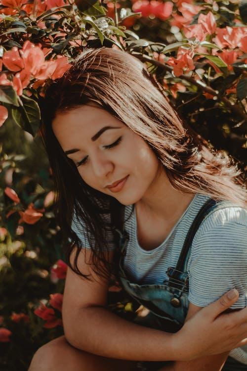 Gratis lagerfoto af afslappet, blomster, bougainvilleas, close-up