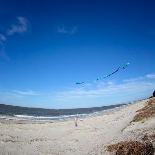 Free stock photo of beach, blue, child, kite
