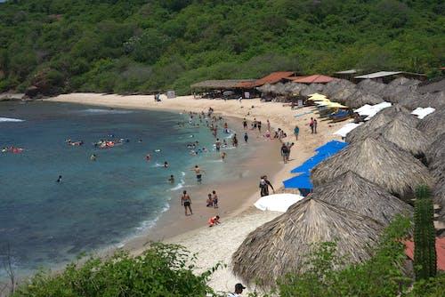 Free stock photo of beach, palapas, people, salt water