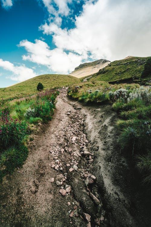 Бесплатное стоковое фото с вершина, высокий, голубое небо, гора