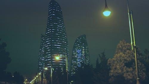 açık, ağaçlar, akşam, ay içeren Ücretsiz stok fotoğraf
