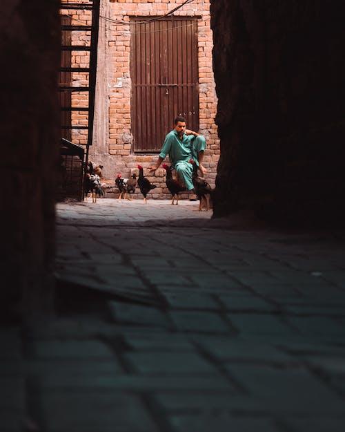Darmowe zdjęcie z galerii z bruk, ceglana ściana, cień, dorosły