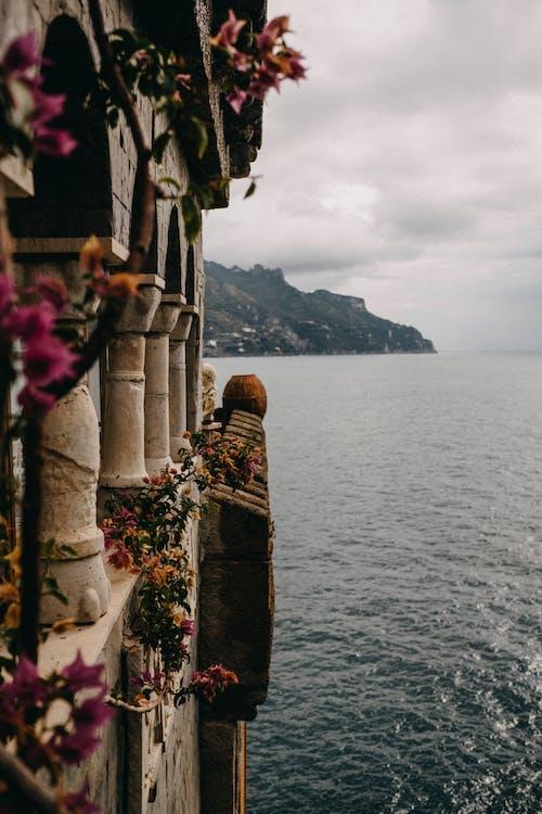 바다의 무료 스톡 사진