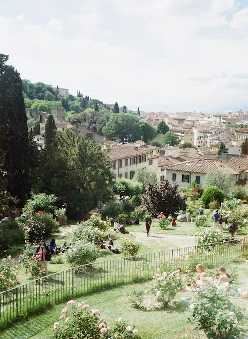 公園, 地標, 地產, 城市景觀 的 免費圖庫相片