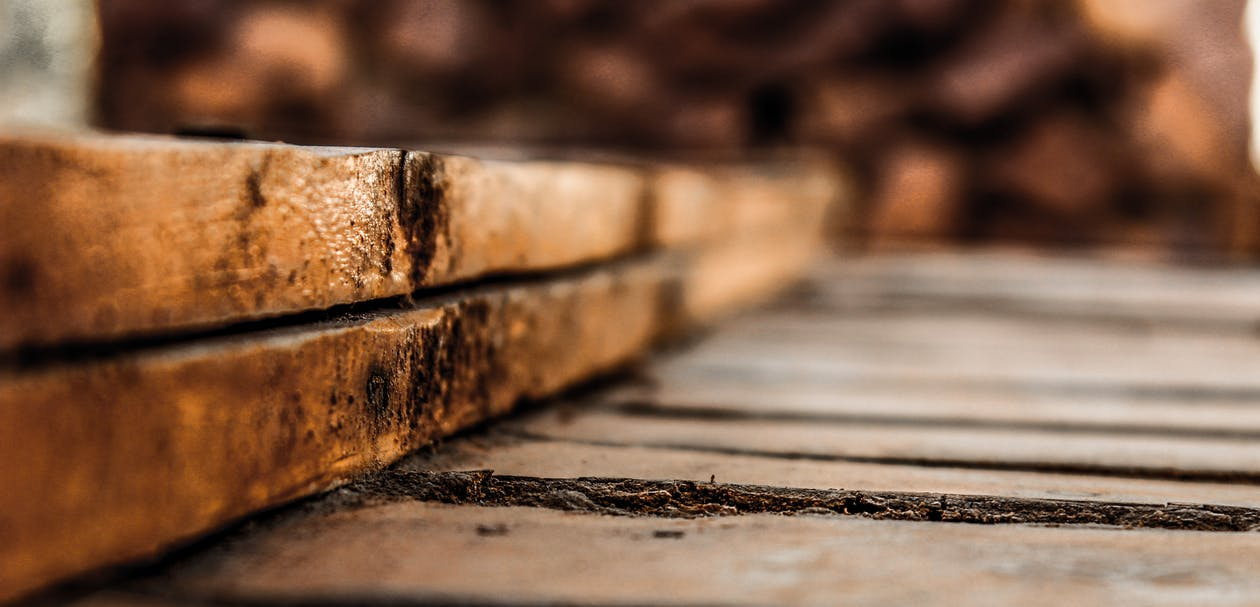 Selective Focus Photography of Brown Surface