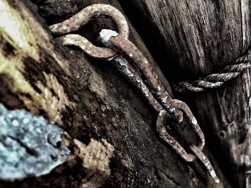 Бесплатное стоковое фото с nikon, абстрактный, заброшенный, Изобразительное искусство