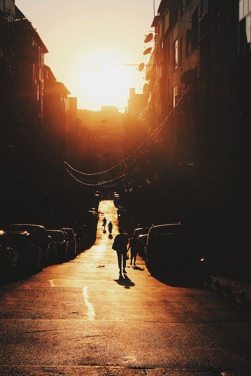 Ingyenes stockfotó hajnal, háttérvilágítás, Napkelte, naplemente témában