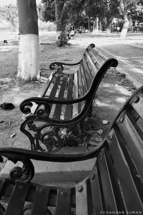 Foto profissional grátis de assento, Banco, banco de parque, P&B