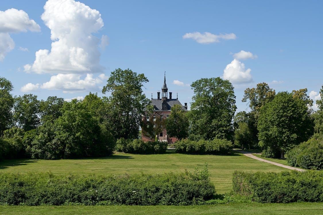 castel, palat, wikscastle
