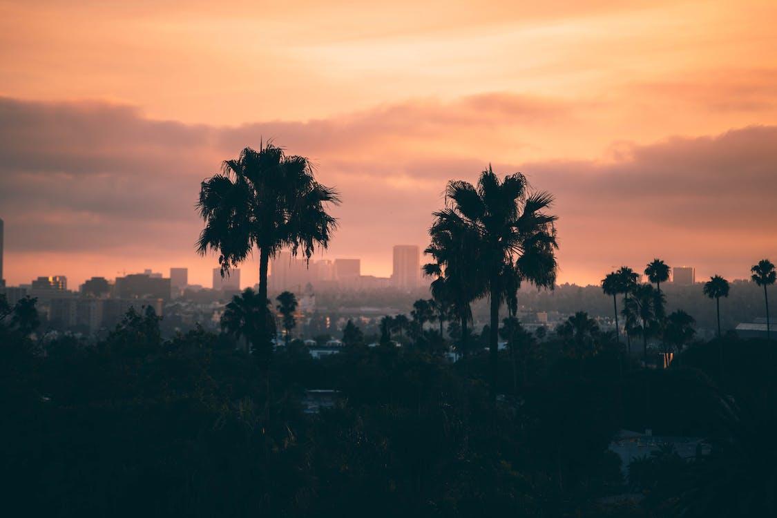 Est ce que Los Angeles est dangereux ? Quel quartier Los Angeles ?