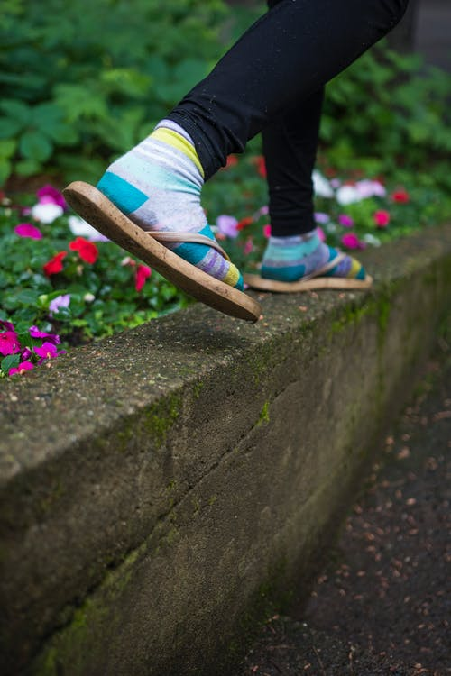 Free stock photo of balance, feet, flowers, going places