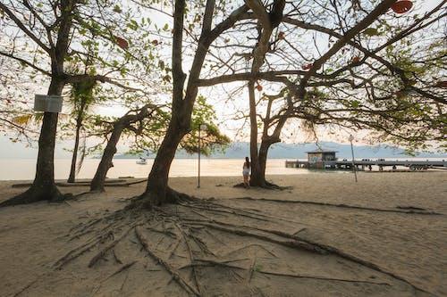 Безкоштовне стокове фото на тему «Берегова лінія, відображення, відпочинок., гори»