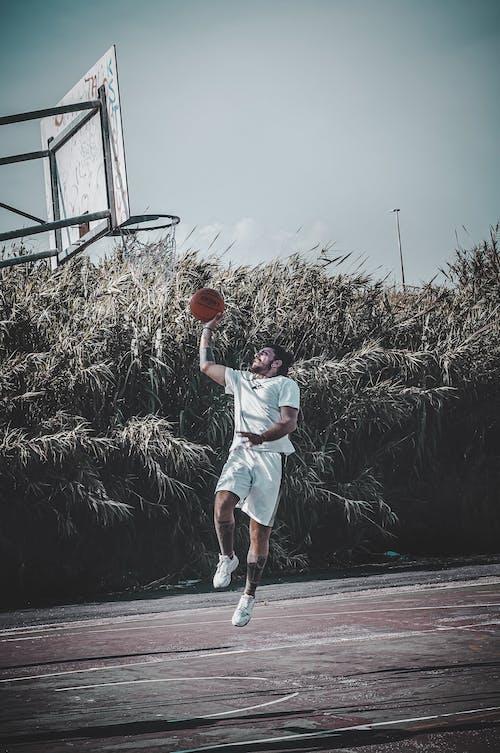Gratis lagerfoto af action energi, atlet, basketball, basketballbane