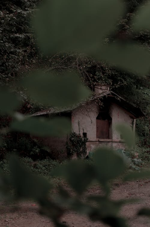 คลังภาพถ่ายฟรี ของ ถูกทอดทิ้ง, น่าขนลุก, บ้าน