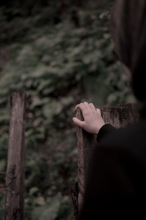 ぼかし, アダルト, フェンス, 人の無料の写真素材