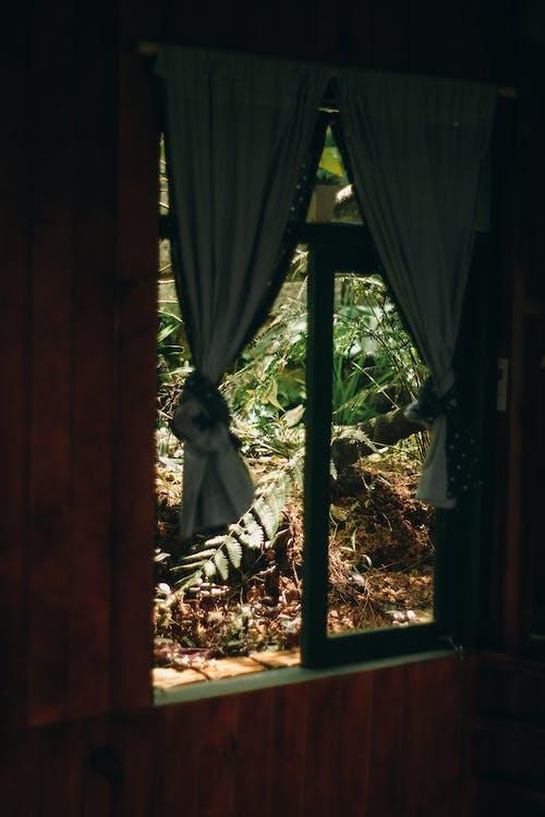 açık, ağaç, Ahşap ev, pencere içeren Ücretsiz stok fotoğraf
