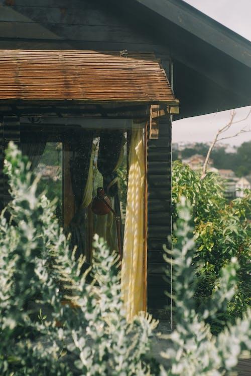açık, ağaç, Ahşap ev, kış bahçesi içeren Ücretsiz stok fotoğraf