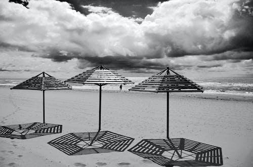 Δωρεάν στοκ φωτογραφιών με ακτή, ακτογραμμή, άμμος, ασπρόμαυρο