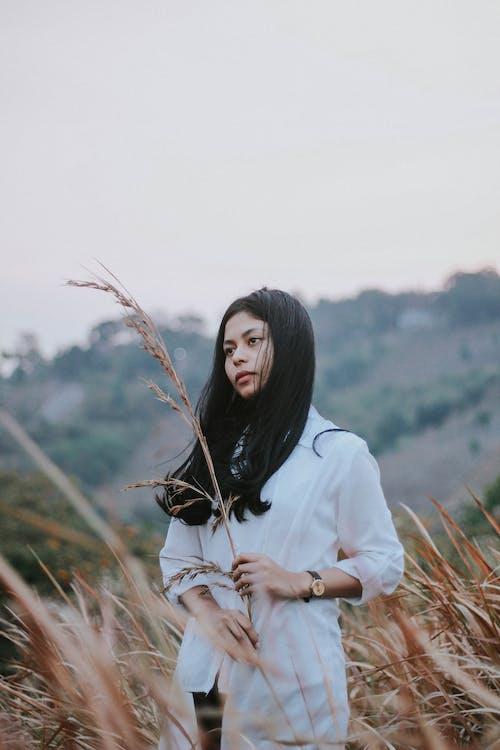 hřiště, krásná žena, pole