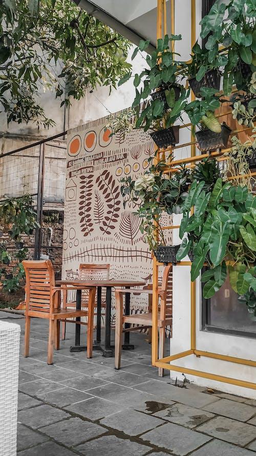 Základová fotografie zdarma na téma efekt, fotky, káva, kavárna