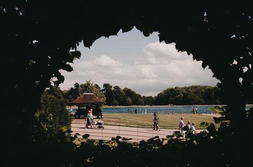 Photos gratuites de arc, carré, feuilles, lac