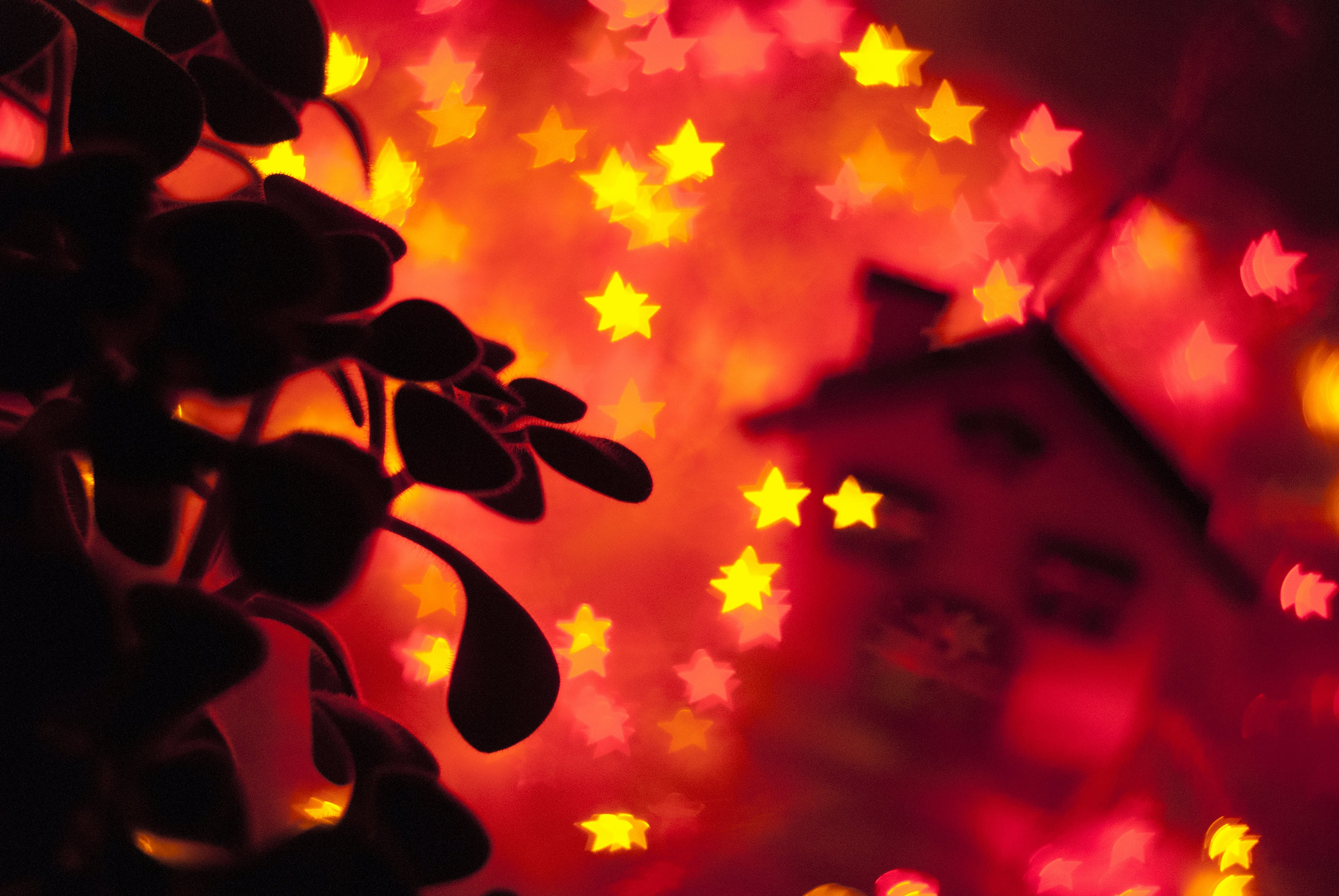 Free stock photo of bokeh, bulbs, christmas, fire