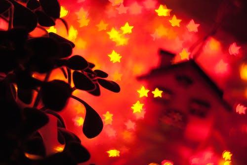 工厂, 新年, 明星, 橙子 的 免费素材照片