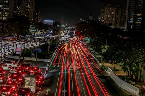 Imagine de stoc gratuită din arbore, automobil, luminile orașului, peren