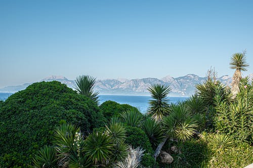 Fotos de stock gratuitas de antalya, frente al mar, Mediterráneo, naturaleza
