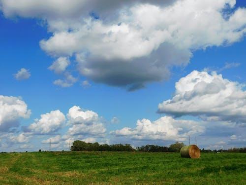Ingyenes stockfotó gomolyfelhők témában