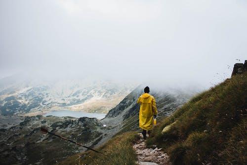 Ingyenes stockfotó domb, esőkabát, Férfi, festői témában