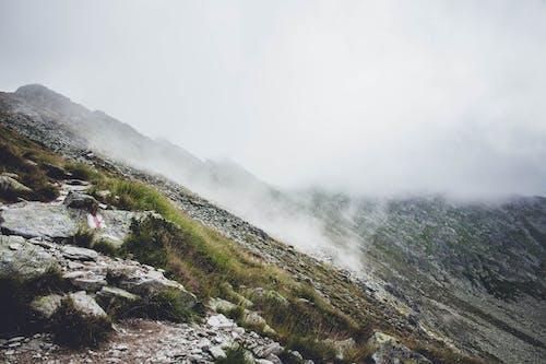 Photos gratuites de aventure, brouillard, brume, brumeux