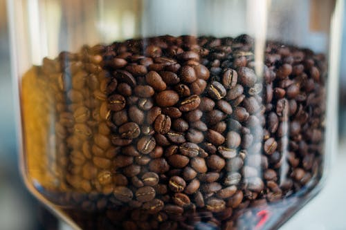 Photo of Coffee Bean in Coffee Grinding Machine