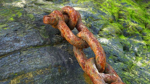 Brown Chain on Rock